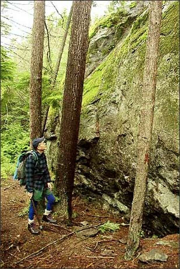 Hiker John Walenta pauses to ponder Waterman Rock, a huge glacial boulder in the Saratoga Woods Preserve on Whidbey Island. Photo: Karen Sykes/Special To The Post-Intelligencer