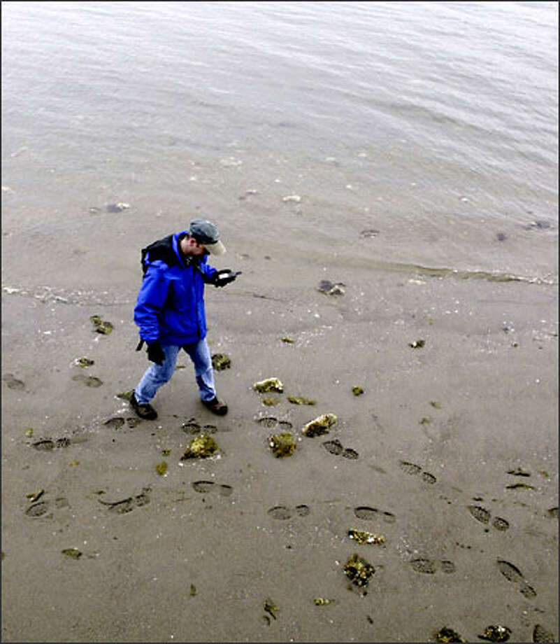 Jon Stanley of Sammamish uses his GPS unit to find a hidden cache on Whidbey Island. Photo: Jim Bryant/Seattle Post-Intelligencer