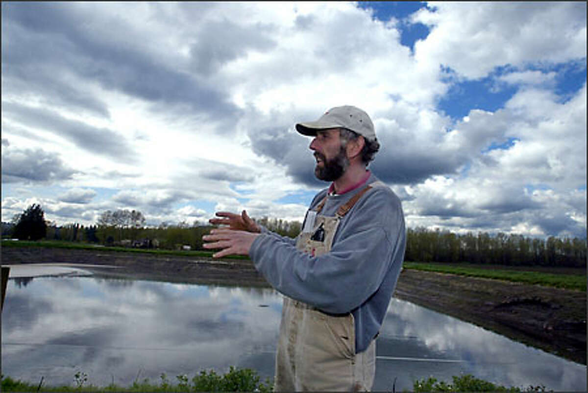 Andy Werkhoven is among farmers working with the Tulalips to preserve cows and salmon in the Skykomish Valley.
