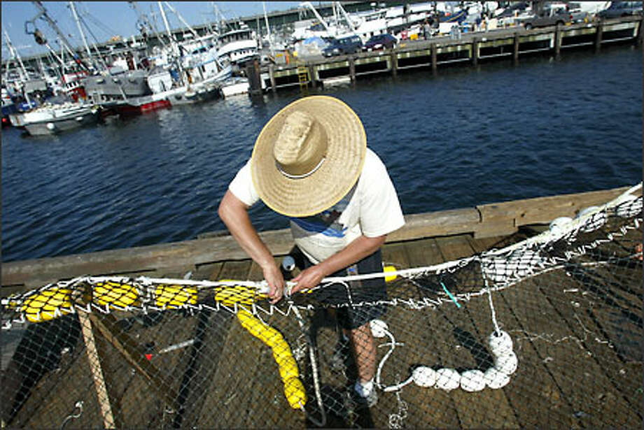 """Alan Jacklet, working on a purse seine at Fishermen's Terminal, said, """"We fish for a sustainable fishery in Southeast Alaska and that is salmon. The state of Alaska takes care of their fish. It's based on biology and not politics."""" Photo: Karen Ducey/Seattle Post-Intelligencer"""