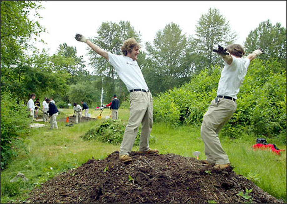 City Year volunteers Nick Fellone, left, and Carson Whitehead balance on a mulch mound yesterday during a habitat restoration project near Duwamish Creek. Photo: David Bitton/Seattle Post-Intelligencer