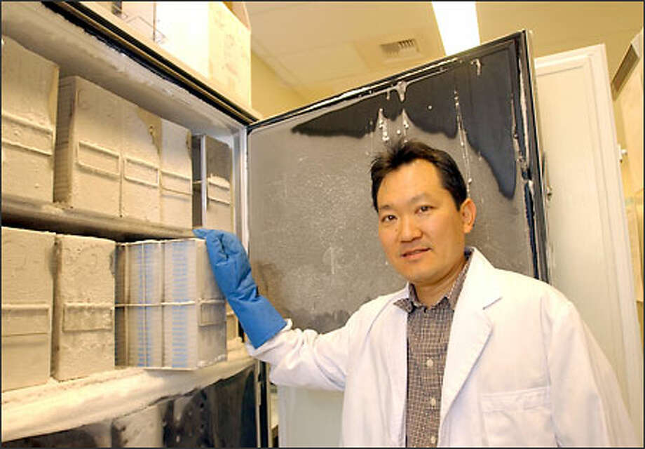 Researcher Chris Amemiya displays containers holding genome libraries of a crocodile, top, and an armadillo at his lab at Benaroya Research Institute. Photo: Ron Wurzer/Seattle Post-Intelligencer