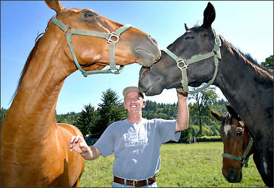 Veteran horseman Larry Ross shows off the great Military Hawk, left, and Chum Salmon at his 10-acres Sunfall Farm. Photo: Gilbert W. Arias/Seattle Post-Intelligencer