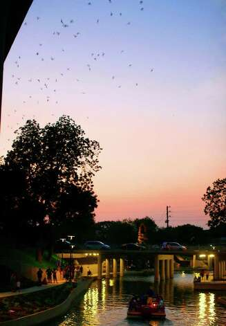Bats fly out from under the Camden Street Bridge/ I-35 underpass at twilight Thursday evening, June 11, 2009. Photo: JENNIFER WHITNEY, Express-News / JWHITNEY@EXPRESS-NEWS.NET