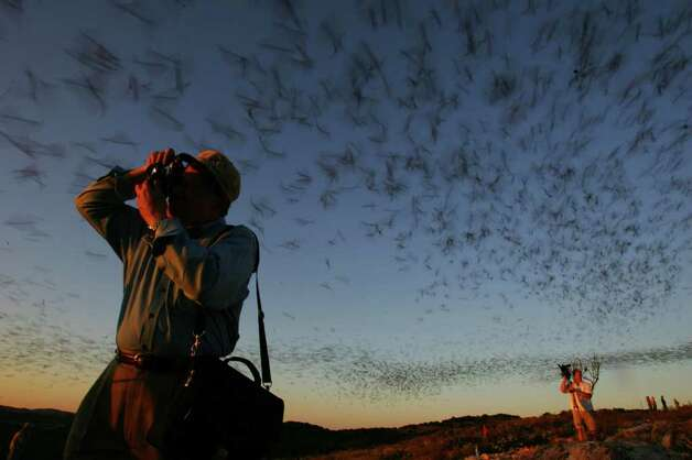 Wildlife biologist Ron George photographs emerging bats in 2005 at Frio Cave near Uvalde. Photo: BAHRAM MARK SOBHANI, Express-News / SAN ANTONIO EXPRESS-NEWS