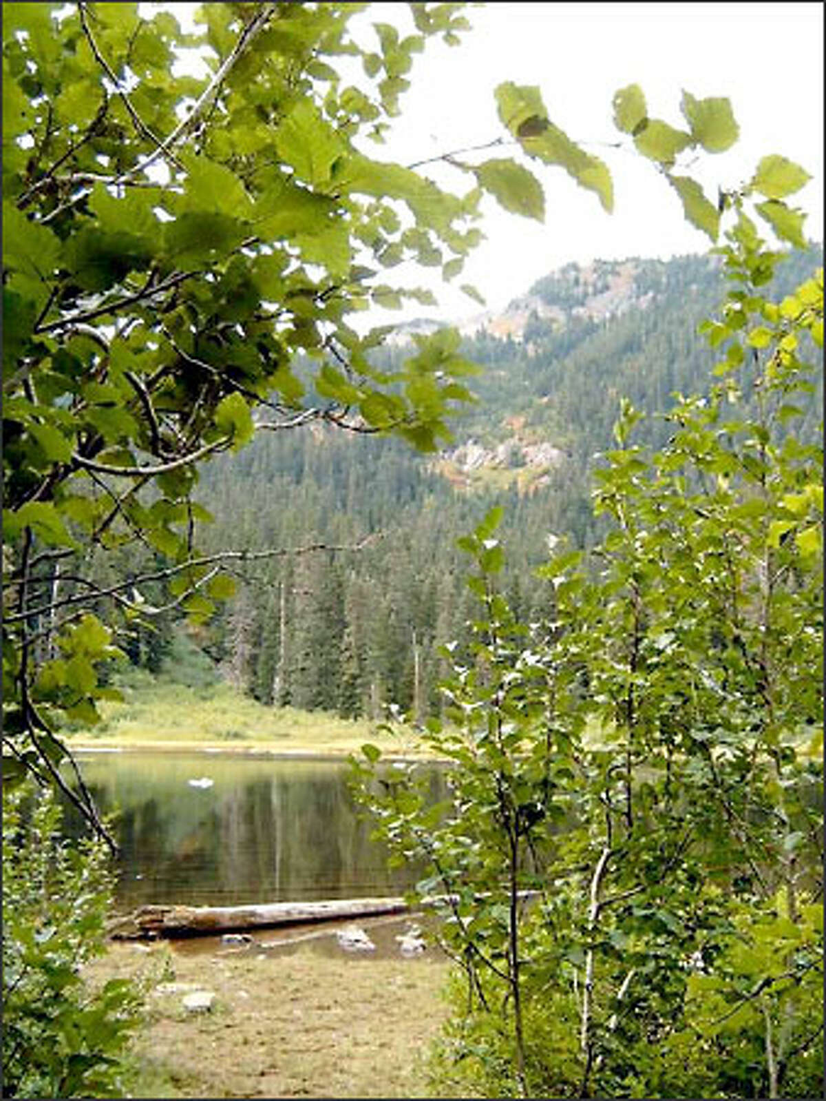 Even though Twin Lake is just east of Snoqualmie Pass and the hike is short and easy, the chances for peace and solitude are quite good.