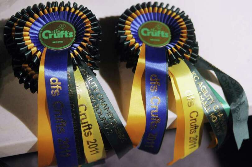 BIRMINGHAM, ENGLAND - MARCH 13:  Crufts rosettes for agility championships await to be awarded on th