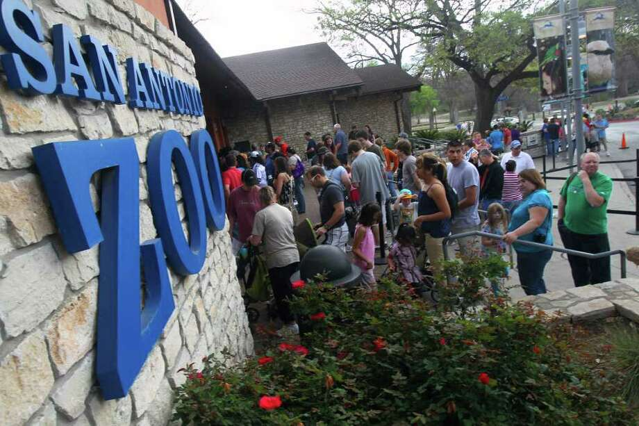 A crowd gathers at the entrance of the San Antonio Zoo. Photo: JOHN DAVENPORT, Express-News / SAN ANTONIO EXPRESS-NEWS (Photo may be sold to the public)