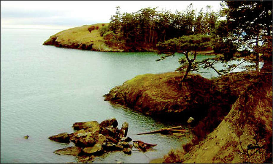 Mossy rocks and gnarled trees accent the Rosario Strait shoreline at Rosario Beach in Deception Pass State Park. Photo: Karen Sykes/Special To The P-I
