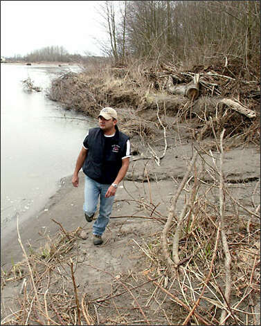 Scott Schuyler walks along property, just west of the state Route 9 bridge over the Skagit River, that the Upper Skagit Tribe bought for river access. Photo: Grant M. Haller/Seattle Post-Intelligencer