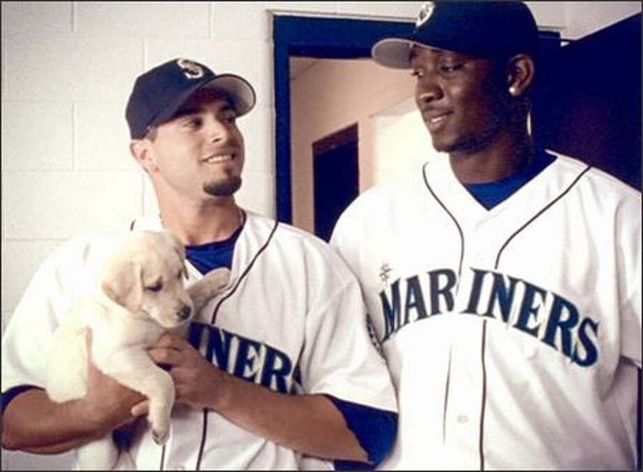 "In this commercial, hilarity ensues when pitchers Joel Pineiro and Rafael Soriano adopt a stray pup and name it ""Mojo."" Catcher Ben Davis, however, doesn't find the dugout doggy very amusing. Photo: /"
