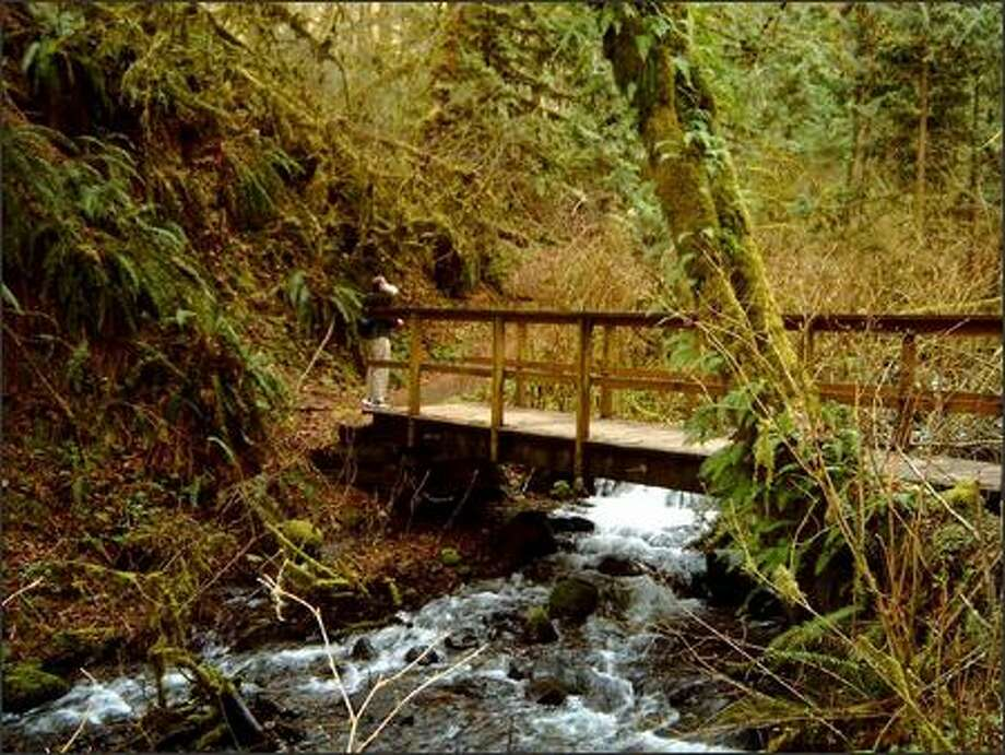 A hiker crosses a footbridge in Flaming Geyser Park. Photo: Karen Sykes/Special To The P-I