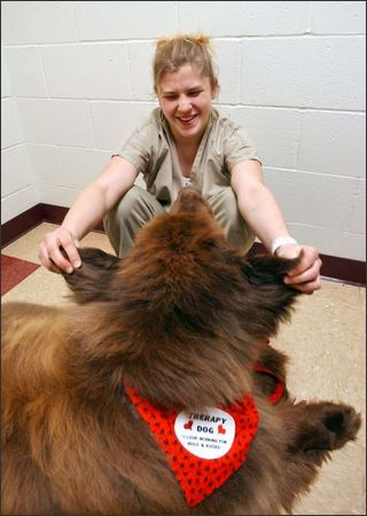 Gentle Ben, a Newfoundland, brings a smile to a 17-year-old inmate named Alex at the Clark County Juvenile Justice Center last week.