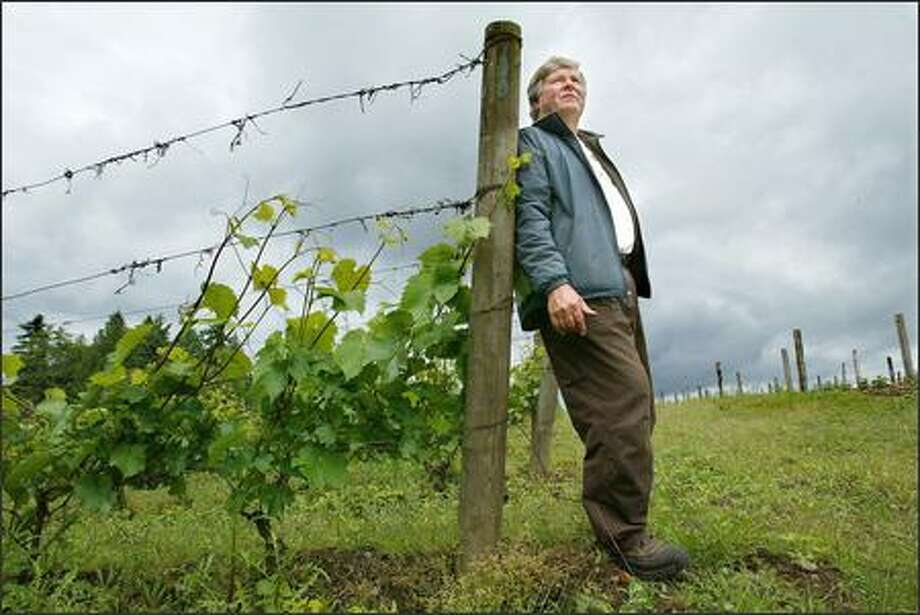 Gerard Bentryn fears government regulation and urban sprawl will force him off his vineyard and out of the wine business on Bainbridge Island. Photo: Paul Joseph Brown/Seattle Post-Intelligencer