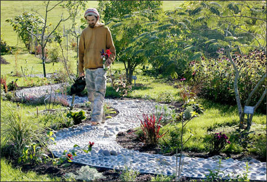 Virgil Miller, an undergraduate student of herbal science at Bastyr University, walks on the new reflexology footpath on the Kenmore campus. Photo: Dan DeLong/Seattle Post-Intelligencer