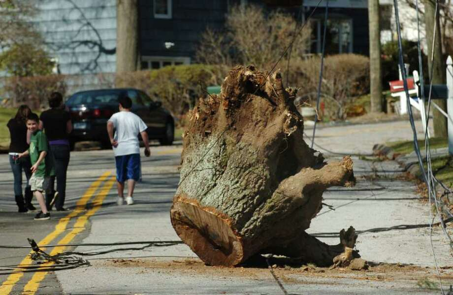 A tree stump sits on Alpine Street in Stamford where power was knocked out for a week after the March 13 nor'easter that ripped through the area. Photo: Bob Luckey/File Photo, File Photo / Stamford Advocate File Photo