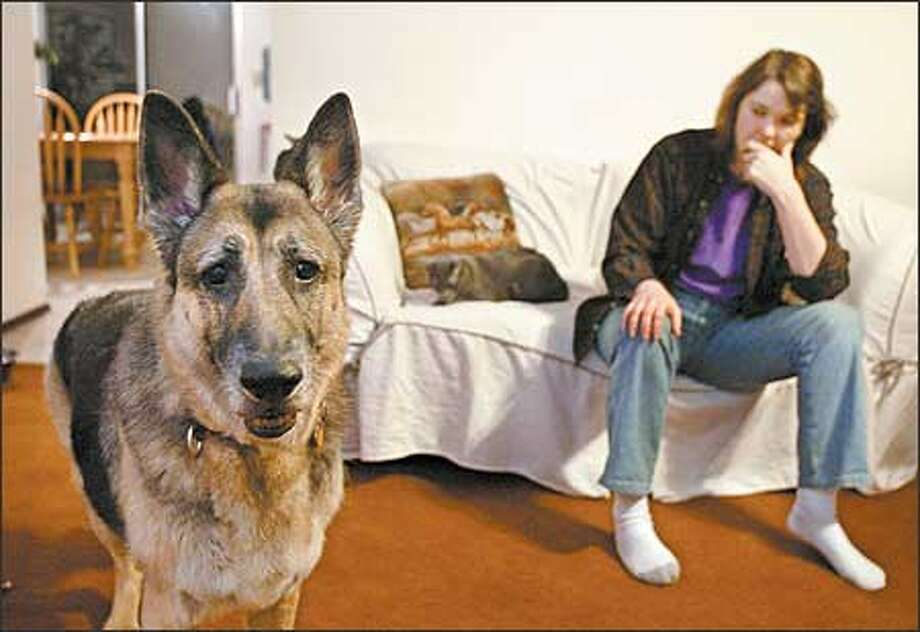 Allison, a German shepherd, barked at an appraiser. For that, and her breed, Wiccan York-Patten's homeowner insurance was canceled. Photo: Gilbert W. Arias/Seattle Post-Intelligencer