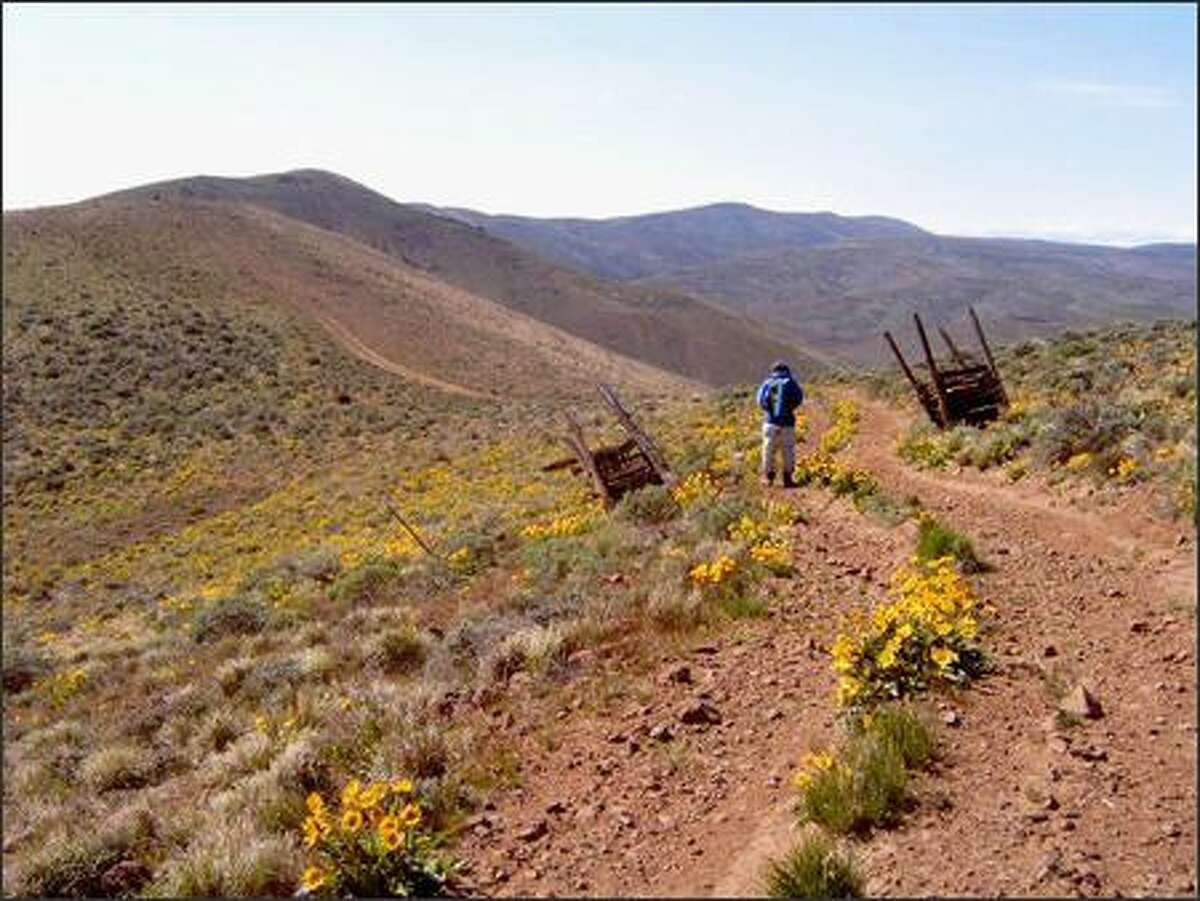 A hiker follows the old road toward higher ground on Whiskey Dick Mountain. Desert enthusiasts savor the sagebrush steppe here.