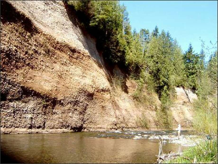The Cedar River flows below a 150-foot gravel cliff, a great spot to catch some sun and eat lunch. The site, which has a small beach, is about 1.5 miles from the Landsburg trailhead of the Cedar River Trail. Photo: KAREN SYKES