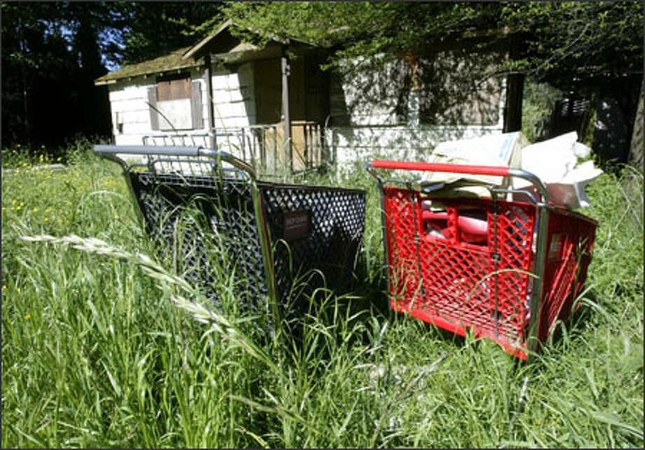 Two shopping carts found recently in the 7000 block of Delridge Way Southwest. Photo: Dan DeLong/Seattle Post-Intelligencer