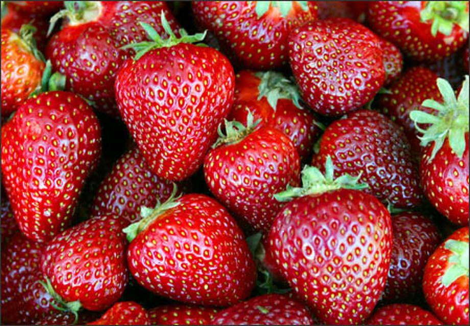 Washington-grown strawberries. Photo: Gilbert W. Arias/Seattle Post-Intelligencer / SEATTLE POST- INTELLIGENCER