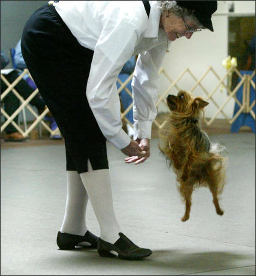 "Glenda Gentleman and her Yorkie, Yoni, perform to Danny Kaye's ""Thumbelina"" at a dog-dancing event in Tukwila yesterday. Photo: Karen Ducey/Seattle Post-Intelligencer"
