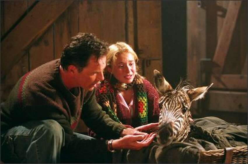 The story begins as a baby zebra is accidentally left behind by a traveling circus during a raging storm. The foal is rescued by farmer Nolan Walsh (Bruce Greenwood), a retired champion thoroughbred trainer, and his daughter, Channing (Hayden Panettiere). They keep the zebra and name him Stripes.