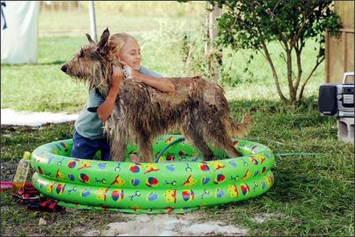 Opal (AnnaSophia Robb) gives her new best friend, a stray dog she has named Winn-Dixie, a much-needed bath.