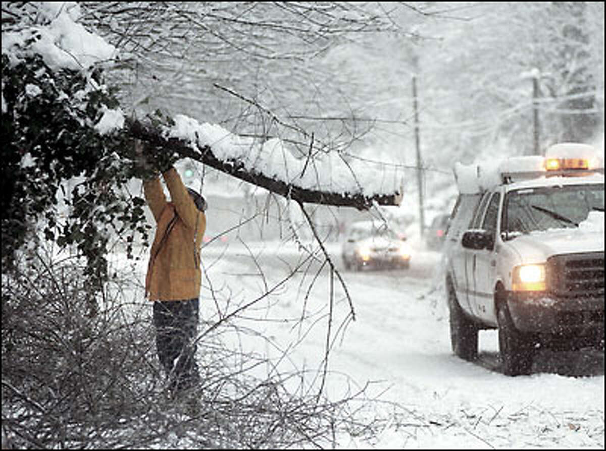 Seattle Transportation worker Win Abelsen cuts tree that fell onto northbound lanes of Lake City Way Friday morning snowstorm. The weight of heavy wet snow caused the tree to fall.