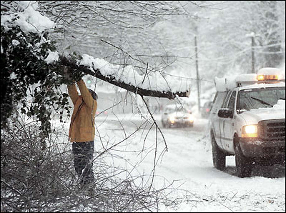 Seattle Transportation worker Win Abelsen cuts tree that fell onto northbound lanes of Lake City Way Friday morning snowstorm. The weight of heavy wet snow caused the tree to fall. Photo: Jeff Larsen, Seattle Post-Intelligencer