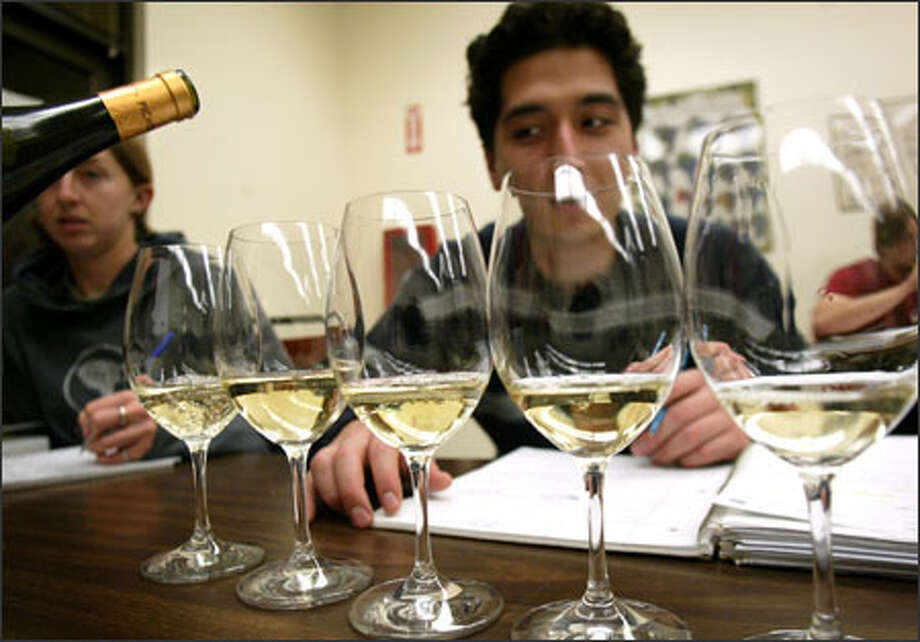 Student Abram Geballe inspects glasses of wine at South Seattle Community College's Northwest Wine Academy, where students can earn certificates in winemaking and marketing. Photo: Joshua Trujillo, Seattlepi.com / Seattle Post-Intelligencer