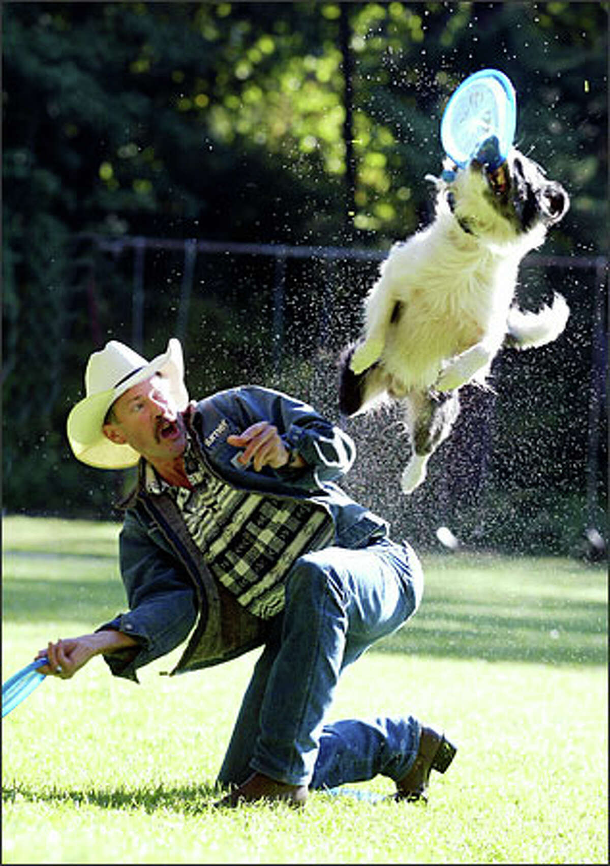 Ray Calhoun of Madrona works out with his border collie mix, Cordell. Calhoun, Cordell and Calhoun's other dog, Cowboy, all headed to the world canine disc championships in Atlanta.Brown: Ray Calhoun is a former professional bull rider who now calls Seattle home. He agrees with me that there should be an exemption to leash laws for border collies. He misses Montana, where dogs run free.