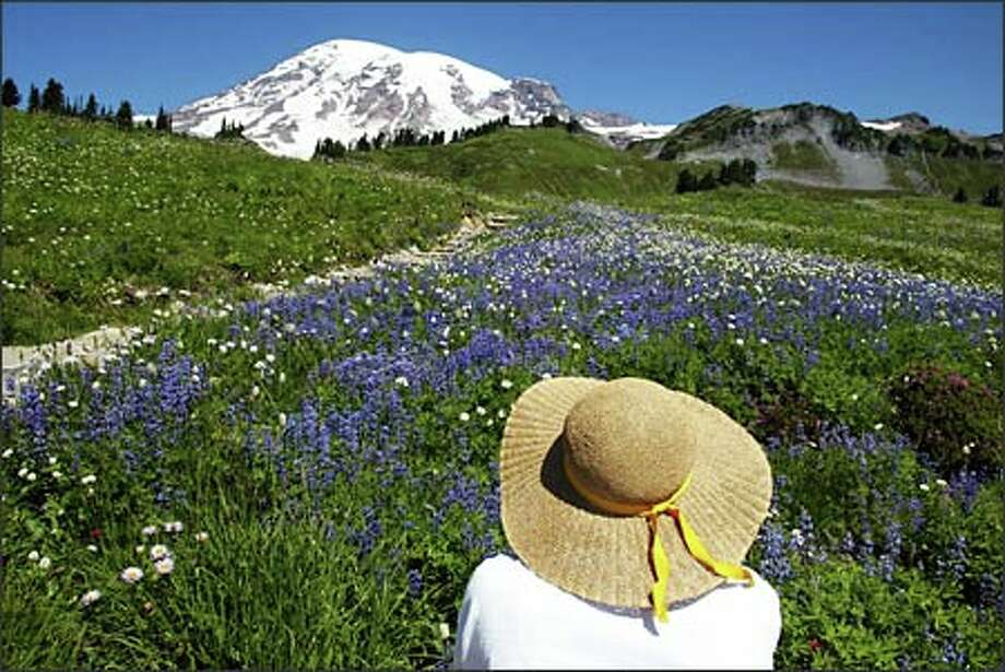 Pat Jordan of Steilacoom stops along the Golden Gate Trail to photograph a field of wildflowers with snow-capped Mount Rainier in the background.Arias:I had wanted to photograph the wildflowers for some time, but every time I made plans, something came up -- like bad weather or the flowers wilting away by the time I could clear my schedule. On this day, everything came together. It was a beautiful day, the mountain was out and the flowers were at their finest. I walked the trail for about an hour or so before I spotted Pat and her wonderful hat. Life is good. Photo: Gilbert W. Arias, Seattle Post-Intelligencer
