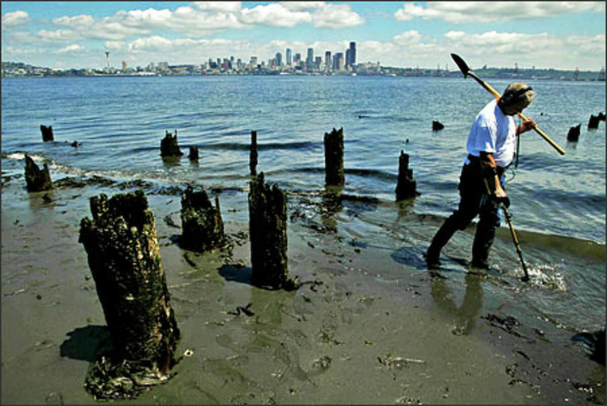 Richard McCleary takes advantage of a minus-3.9 low tide to do some metal detecting at the site of the old Luna Park in West Seattle. McCleary works for The Boeing Co. and said he started metal detecting years ago. McCleary is a member of the Cascade Treasure Club and said in the past he has found many old coins, including an 1899 quarter.Arias: I was driving around Seattle looking for a feature photo for the next day's paper. I had been looking around the north end of town with no luck, and decided to drive over to West Seattle for a change of view. I was lucky enough to spot McCleary from the street as he was walking along the beach, looking for lost treasures.