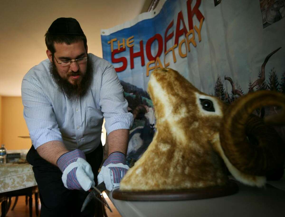 Rabbi Shlame Landa saws off the tip of a ram's horn as he demonstrates the making of a Shofar in his home on Thursday, September 10, 2009 in Fairfield, Conn. Landa is conducting a Shofar making workshop on Sunday, September 13 at 3:30 p.m. at the Jewish Community Center at 4200 Park Avenue in Bridgeport.