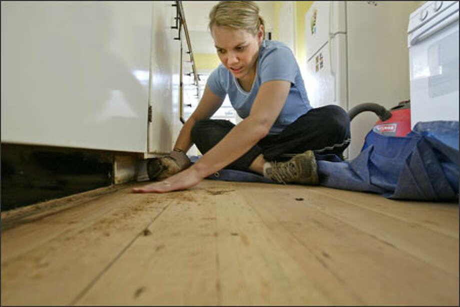 When she's not planning her wedding or teaching at City University, Nichole Francis works on renovating her kitchen. Francis said the key to tackling the myriad projects is to pick away at them rather than getting paralyzed by the big picture. Photo: Mike Urban/Seattle Post-Intelligencer / Seattle Post-Intelligencer