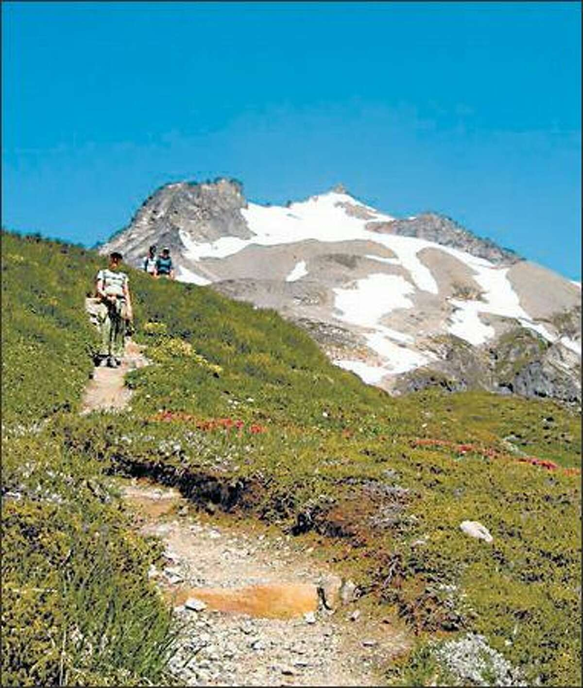 Hikers descend through heather on Sahale Arm above Cascade Pass in North Cascades National Park. Behind them rises 8,680-foot Sahale Peak.
