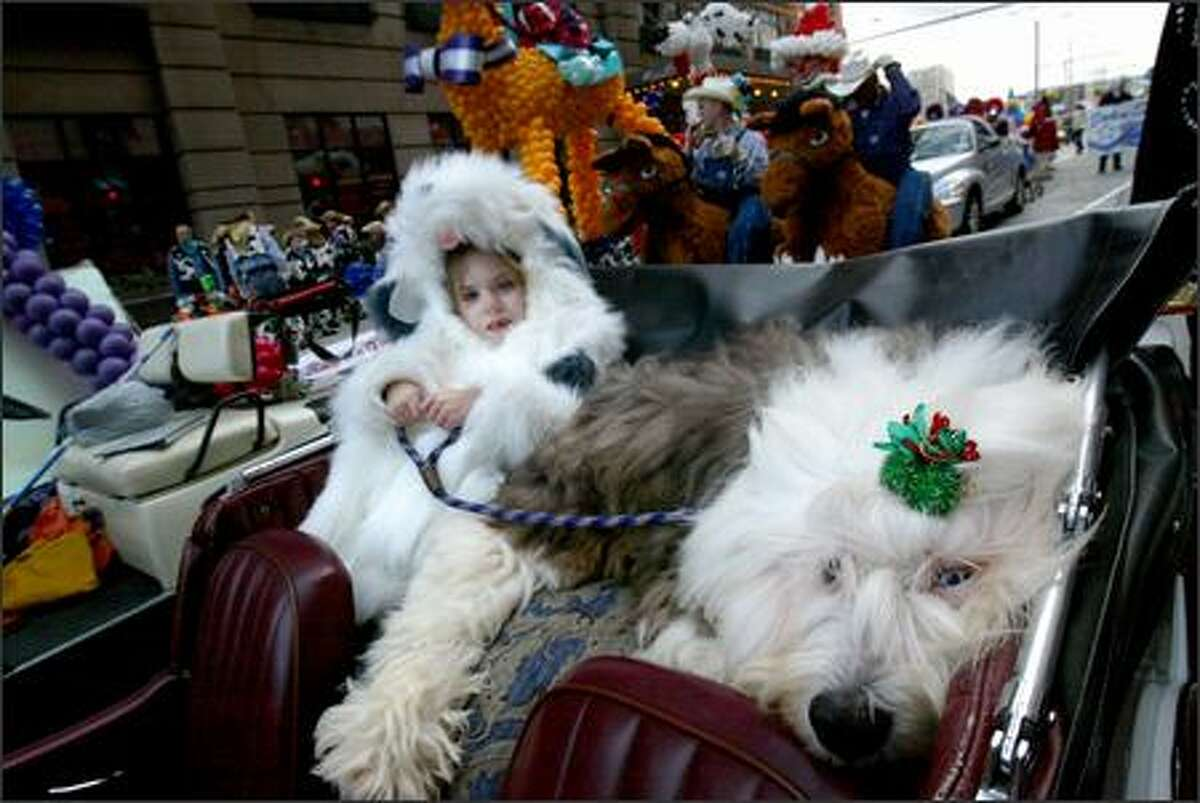Haley Sacha, 5, wearing an old English sheepdog outfit sits with Frankie, named after