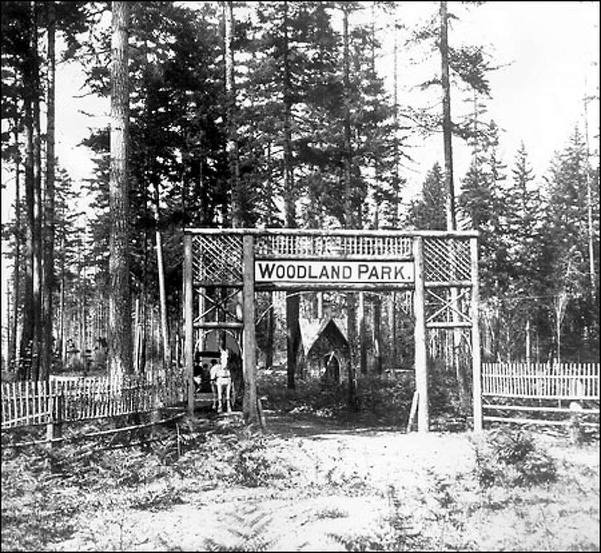 Woodland Park, circa 1900: A horse and carriage leave Woodland Park, which was purchased from the estate of Guy Phinney in 1899 for $100,000 though some people protested it was too far north to be a public park. In 1903, a small collection of animals was donated to the park, marking the start of the Woodland Park Zoo.