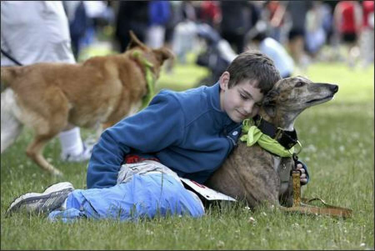 10-year-old Gavin Schier, of Shelton, cuddles with Ritia, a four-year-old greyhound, before the start of the 8th Annual Furry 5K Fun Run and Walk.
