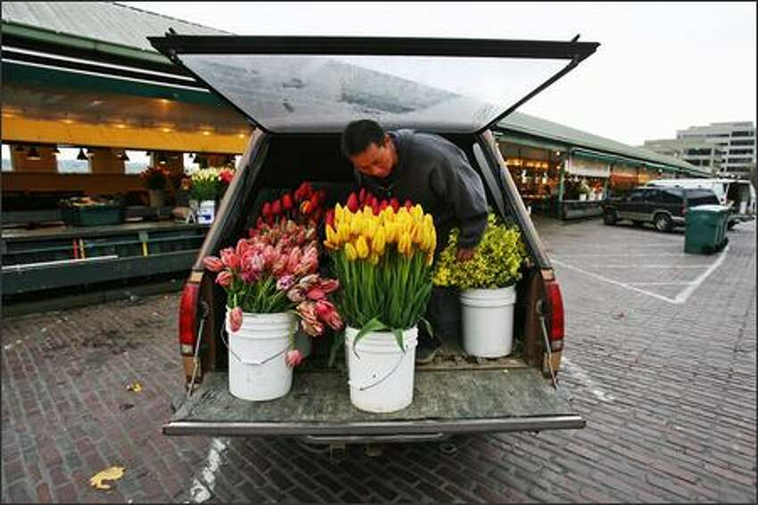 Leng Lee stages buckets of tulips on the back of his truck as he prepares to unload them at Pike Place Market.