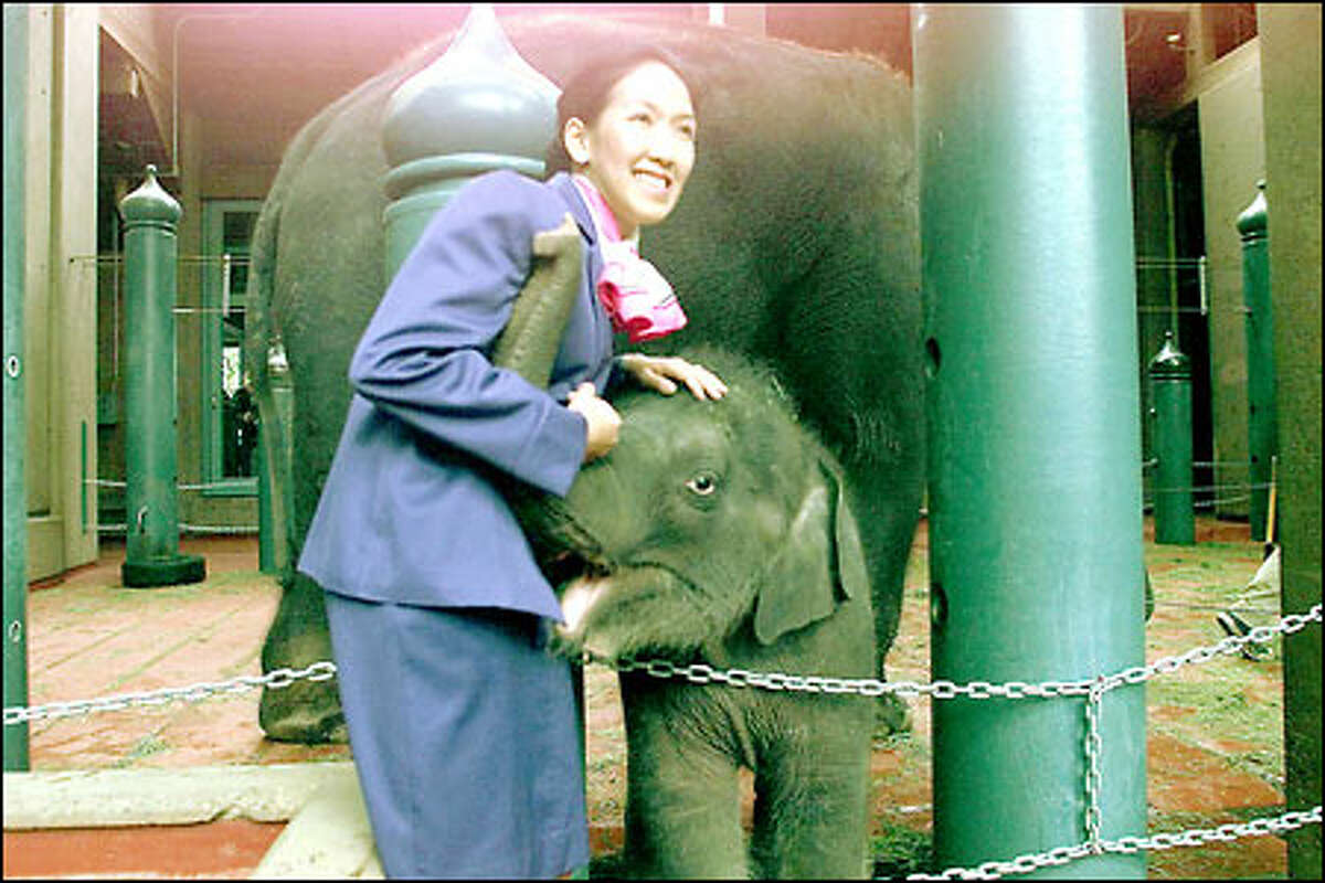 Preyanan Monghelsri, part of a delegation from Thailand, gives baby Hansa a hug during a celebration of the elephant's naming.