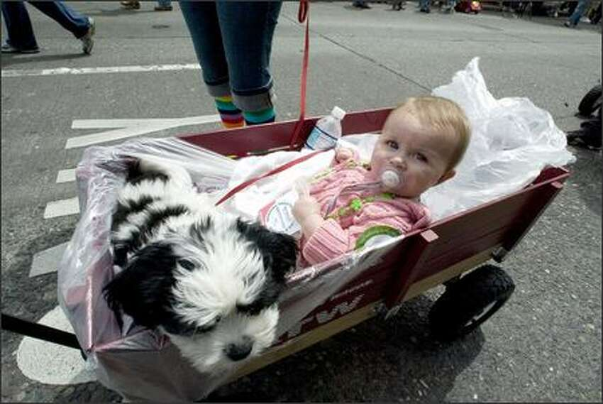 Nine-month old Caroline Counter and her dog Ben are given a wagon ride in the Gay Pride March on Capitol Hill.