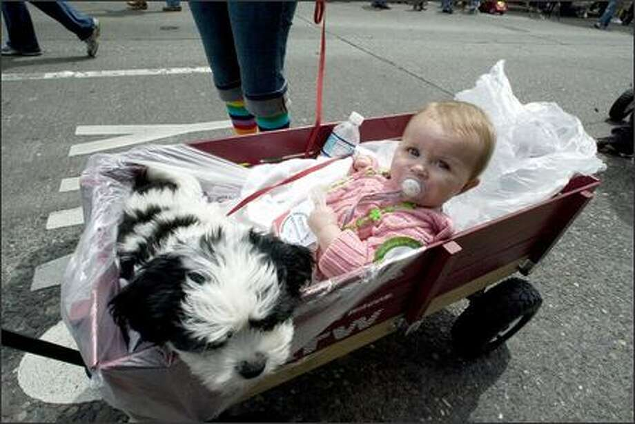 Nine-month old Caroline Counter and her dog Ben are given a wagon ride in the Gay Pride March on Capitol Hill. Photo: Jim Bryant, Seattle Post-Intelligencer