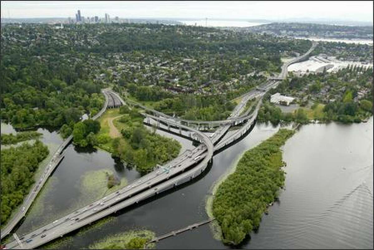 An aerial view of the Highway 520 Interchange in the Washington Park Arboretum.