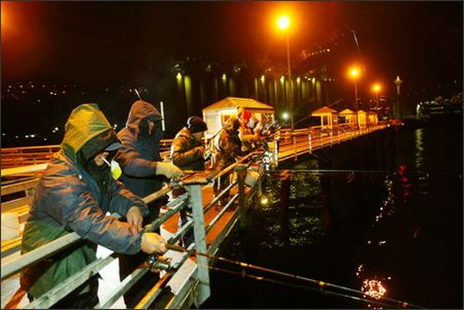 Local fishermen jig for squid at the Terminal 86 fishing pier at Myrtle Edwards Park in Seattle. Photo: Grant M. Haller/Seattle Post-Intelligencer