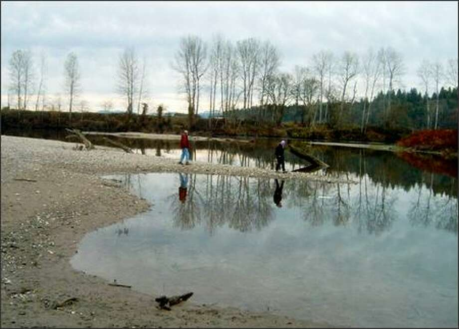 When the Snohomish River is low, hikers can go beyond the end of the trail onto the gravel bars. Photo: Karen Sykes/Special To The Post-Intelligencer