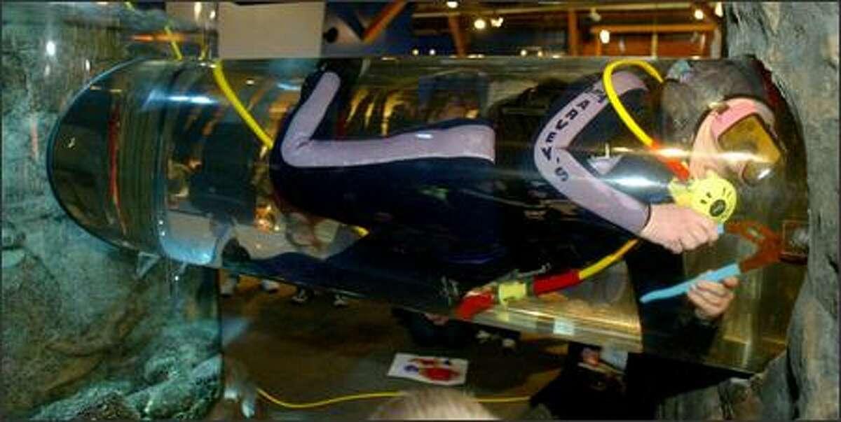 Seattle Aquarium's Melissa Fogleman opens a door to unite two octopuses on Valentine's Day.