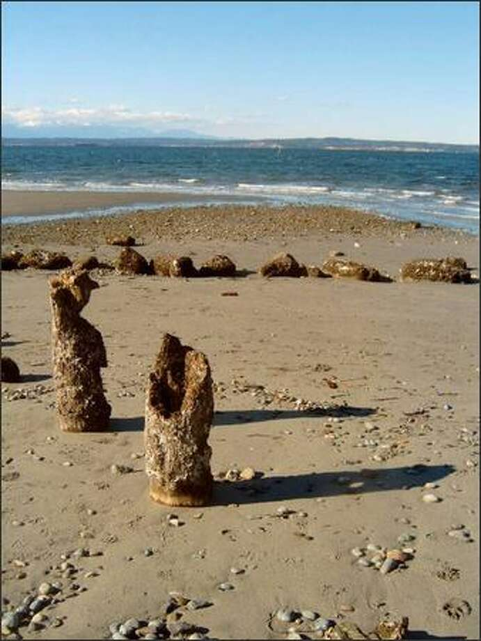 Crumbling pier pilings stand sentinel on the Golden Gardens beach. The Olympic Mountains loom in the distance, across Puget Sound. Photo: KAREN SYKES