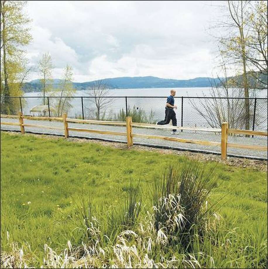 A jogger runs along the most natural section of the new East Lake Sammamish Trail near Redmond. Photo: DAN DELONG/P-I